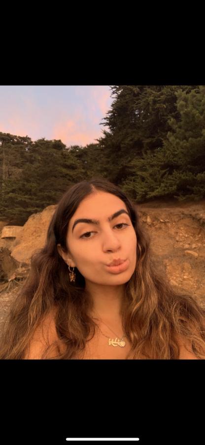 Parnia Ayoubi