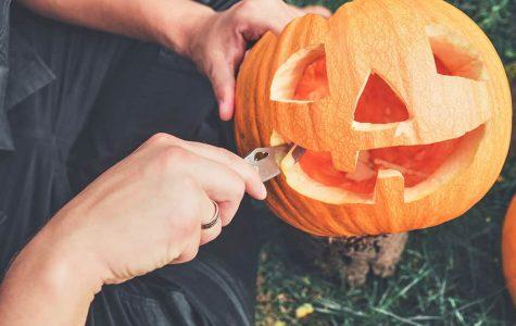 Fun fall activities during quarantine
